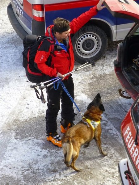 Dogs help find casualties node full image 2